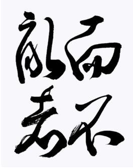 koyama_1